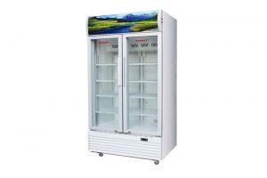 Tủ mát Sanaky 1000 lít VH-1009HP2