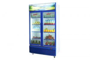 Tủ mát Sanaky 1000 lít VH-1009HPV