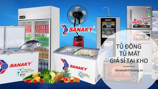 Tủ đông Sanaky giá rẻ ở Bình Dương